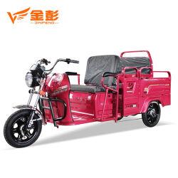 أسرة [مولتي-وس] إستعمال درّاجة ثلاثية كهربائيّة