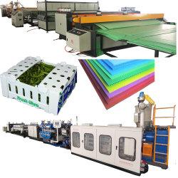 PP/PE/PC hueco de plástico de polipropileno de la Junta de hoja corrugado de cuadrícula que hace la máquina de embalaje caja de cartón/Línea de producción de la extrusora