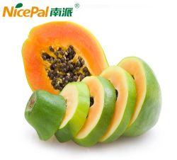 100%の証明される自然なパパイヤのフルーツジュースの粉かHalal