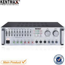 De PRO MiniVersterker van de Gitaar van het Huis Stereo Audio2CH met de Vertoning van USB BR VFD