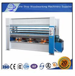 Hot Press-Oppervlaktematerialen Voor Houten Deur-/Vlakplaat Hot Laminator Houten Productmachines