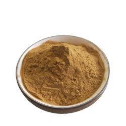 Estratto organico di Purpurea del Echinacea di alta qualità con i polifenoli