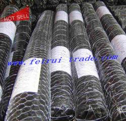 Aves de Capoeira galvanizado Net / gaiolas de arame Hexagonal