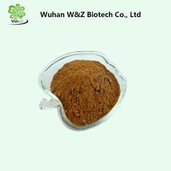 自然な減量の粉のココアシードのエキスのテオブロミンの粉Heobromine 10% 20%