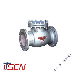 DIN литая углеродистая сталь A216 Wcb Проверка поворота клапана Pn40 DN250