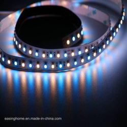 Bande chaude 12VDC/24VCC 120LED/M 5050 SMD LED Spécifications LED 5 puces d'éclairage décoratif cinq couleurs 1 LED lumière corde rigide/bande