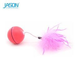 تحاوريّ [لد] سحريّة قطّ كرة لعبة مع ريش محبوب إمداد تموين صنف