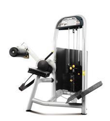 Salle de gym retour commercial formateur corps de construction de l'exercice de l'équipement de conditionnement physique de la machine