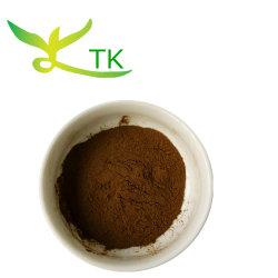 Haut de grade d'alimentation de l'usine chinoise Epimedium extrait/Horny Goat Weed extrait avec l'icariine 98 %