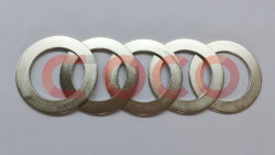 Ring Neodymium Permanent Magnet Step Motor