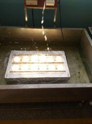 Protección IP68 Resistente al agua marina de 60 vatios LED Proyectores subacuáticos