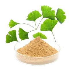 Poudre d'extrait de feuille de Ginkgo Biloba avec bonne eau soluble pour Supplément alimentaire
