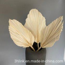 漂白されたヤシのやりのやしの乾燥された花の束 5 パームスピアーズダスティピンクパームスピアナチュラルドライファンサン パーム