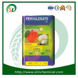 Barato preço acaricida inseticida fenvalerato 10%20%20%Ew com alta qualidade