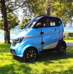 Batterie-Straßen-zugelassenes elektrisches Auto der Mobilitäts-3000W 100ah Li mit L6e Bescheinigung