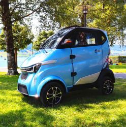 L6eの証明書が付いている移動性3000W 100ah李電池の通りの可能な電気自動車