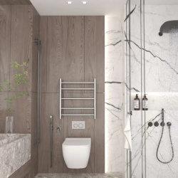 壁面取り付け式ステンレススチール 304 タオルウォーマー電気タオルラック 浴室乾燥の熱い販売 (Z6E-997-30)