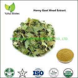 Extrato de plantas daninhas Cabra córnea para baixa libido e disfunção erétil