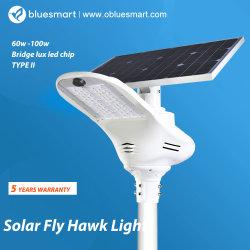 政府のプロジェクト及び道の照明領域の照明のための2018の革新的な統合された太陽LEDの街灯