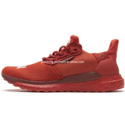 男女兼用の靴のPharrellウィリアムスX太陽Huの高品質の靴