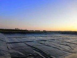 GM-13品質および三テストレポートおよびセリウムの証明書が付いている池を耕作しているエビに使用するスムーズな表面の適用範囲が広いHDPE