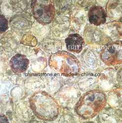 Деревянные Serpergiante Semi-Precious каменными плитками и столешницами