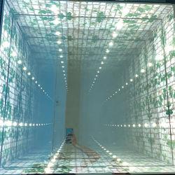 إضاءة الزجاج المقسى نفق عميق 3D LED أرضية الرقص لنادي ديسكو