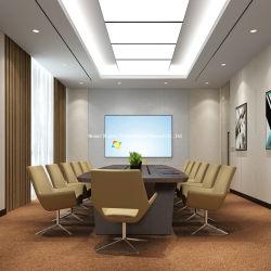 WG703-هوت سلان موهوبة وممثبطة للهب كومة قطع مقطعة/طرف شرار التجارية حائط النول إلى السجاد الحائطي