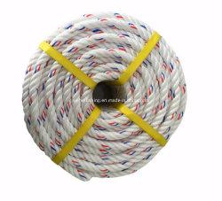 Corda de PP forte para a pesca Corda de monofilamento Danline PP de polipropileno com diferentes vertentes de cordas de amarração de corda Marinha Corda Flutuante