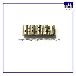 Forme spéciale le néodyme NdFeB composante magnétique avec la qualité de haut permanent