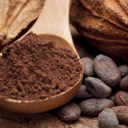 Pure Natural Plant Teobromina Cacao Extract Poeder