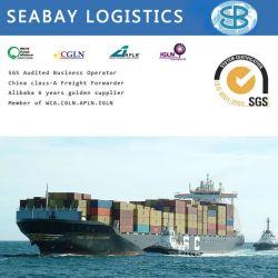Cargadoor/de Verschepende Diensten Company/Shipping van China aan Sydney/Brisbane/Melbourne/Adelaide/Perth Australië