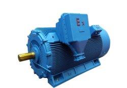 Yb2 de alta tensión Explosion-Proof Motor jaula de ardilla 10kv