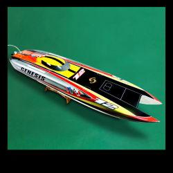 De goedkope Jonge geitjes Gecontroleerde Boot van de Snelheid RC