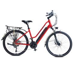 동심 동축 모터 250W 36V 전동식 파워 어시스턴스 자전거(포함 1단 기어에서 120km 주행 거리 및 다음 상황에서 저항 없음 전기 자전거 없이 타보기