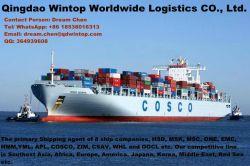 Internationale Logistik Eropean amerikanische Weg-Seefracht