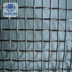 Rete metallica della gabbia di uccello del commestibile con il materiale dell'acciaio inossidabile