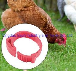 Регулируемый птица куриное мясо птицы ножной кольцо