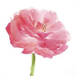 DIY падает камень, 5D Diamond живописи с цветочного дизайна