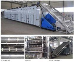 Poivre industriel alimentaire de légumes ou de légumes de la machine de séchage bouteille Machine sécheur