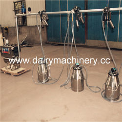 Le seau avec machine à traire Prix pour une ferme laitière