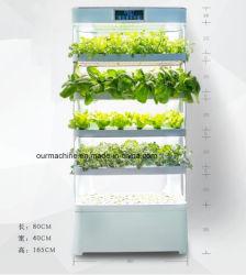 L'intérieur accueil automatisé Système industriel de la culture hydroponique Nft vertical