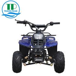 Het omgekeerde Duin ATV Met fouten van de Transmissie 110cc