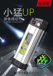 Pesci d'argento 18650 AAA della batteria Xm48V12A di potere del litio ricaricabili