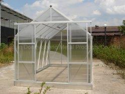 Jardin de fleurs Légumes Fruits Ferme de plantation de verre RDGA0808-6Green House (mm)