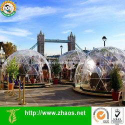 Многофункциональный открытый парниковых прозрачный пластиковый геодезических купол камеры сад купол мой план путешествия