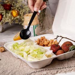 Großhandel Zum Mitnehmen Kompostierbar 3 Fach Einweg Zuckerrohr Bagasse Pulp Biologisch abbaubare Lebensmittelverpackungen für Catering