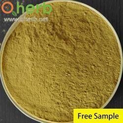 4% de la equinácea polifenol extractos estandarizados