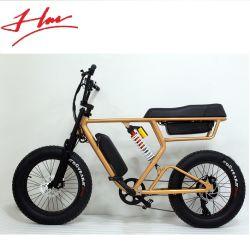 20인치 팻 타이어 전기 자전거(Fat Tire Electric Bicycle) 스노우 바이크(Snow Bike) 성인 자전거