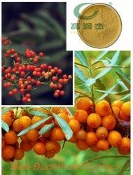 Flavone van Seabuckthorn van het Poeder van de Duindoorn van de Producten van het vlaggeschip Natuurlijke/Rhamnoides Hippophae van het Uittreksel